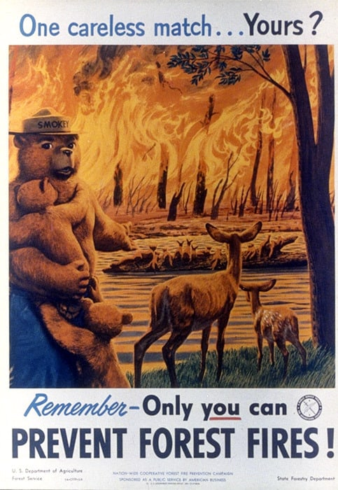 Only YOU Can Prevent Wildfires - Smokey Bear